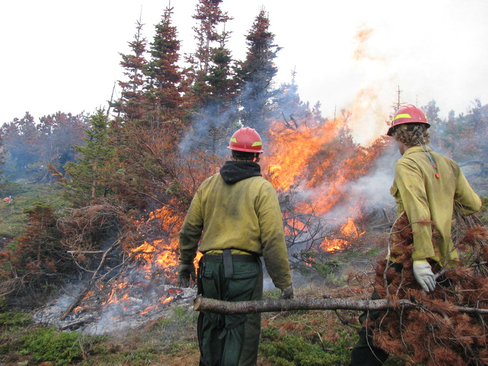 Handpiling and burning in Alice Creek area, Lincoln Ranger District.