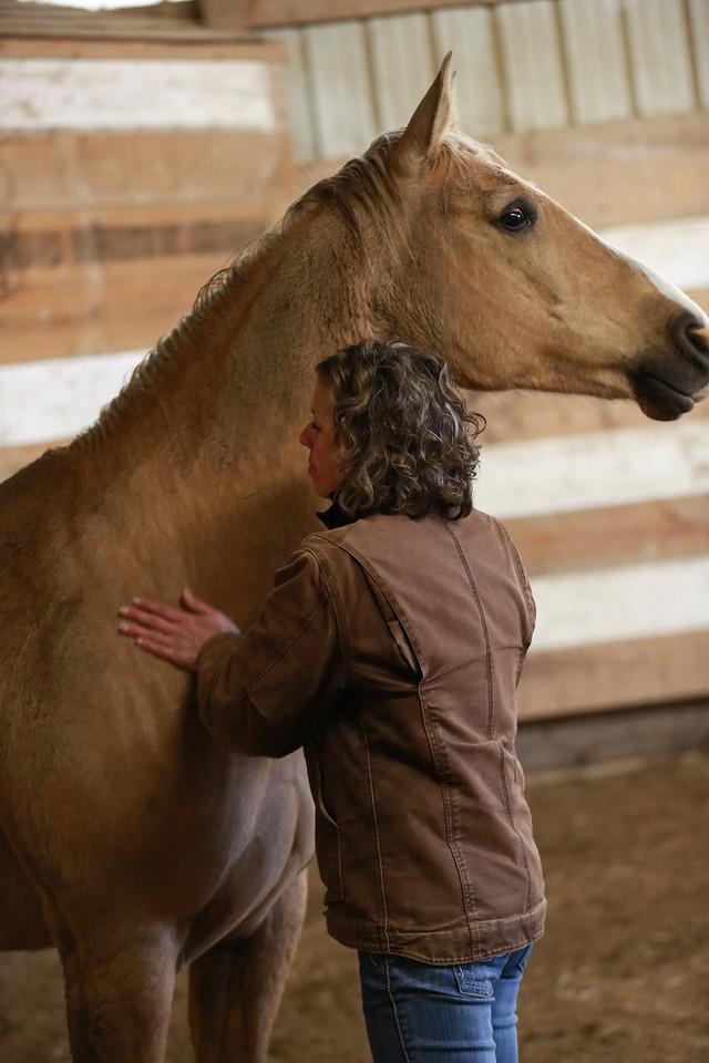 Kim Waltman fullCIRCLE creative + coaching horse EGE