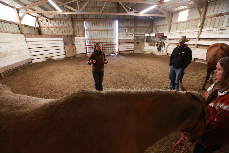 Kim Waltman equine guided education session earlham iowa 2
