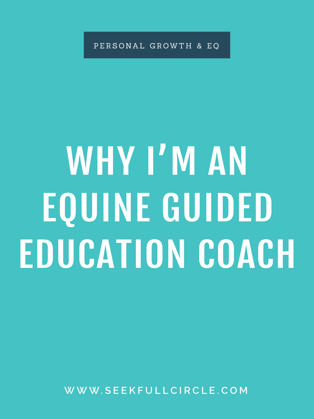 kim waltman fullcircle creative + coaching equine guided education EQ blog