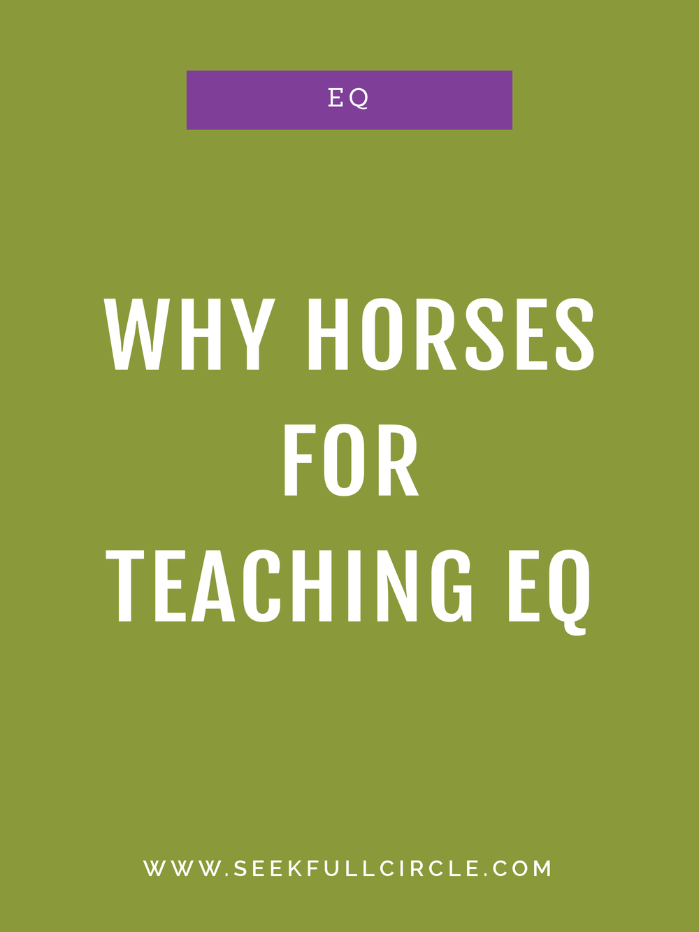 kim waltman fullcircle creative + coaching why horses eq blog