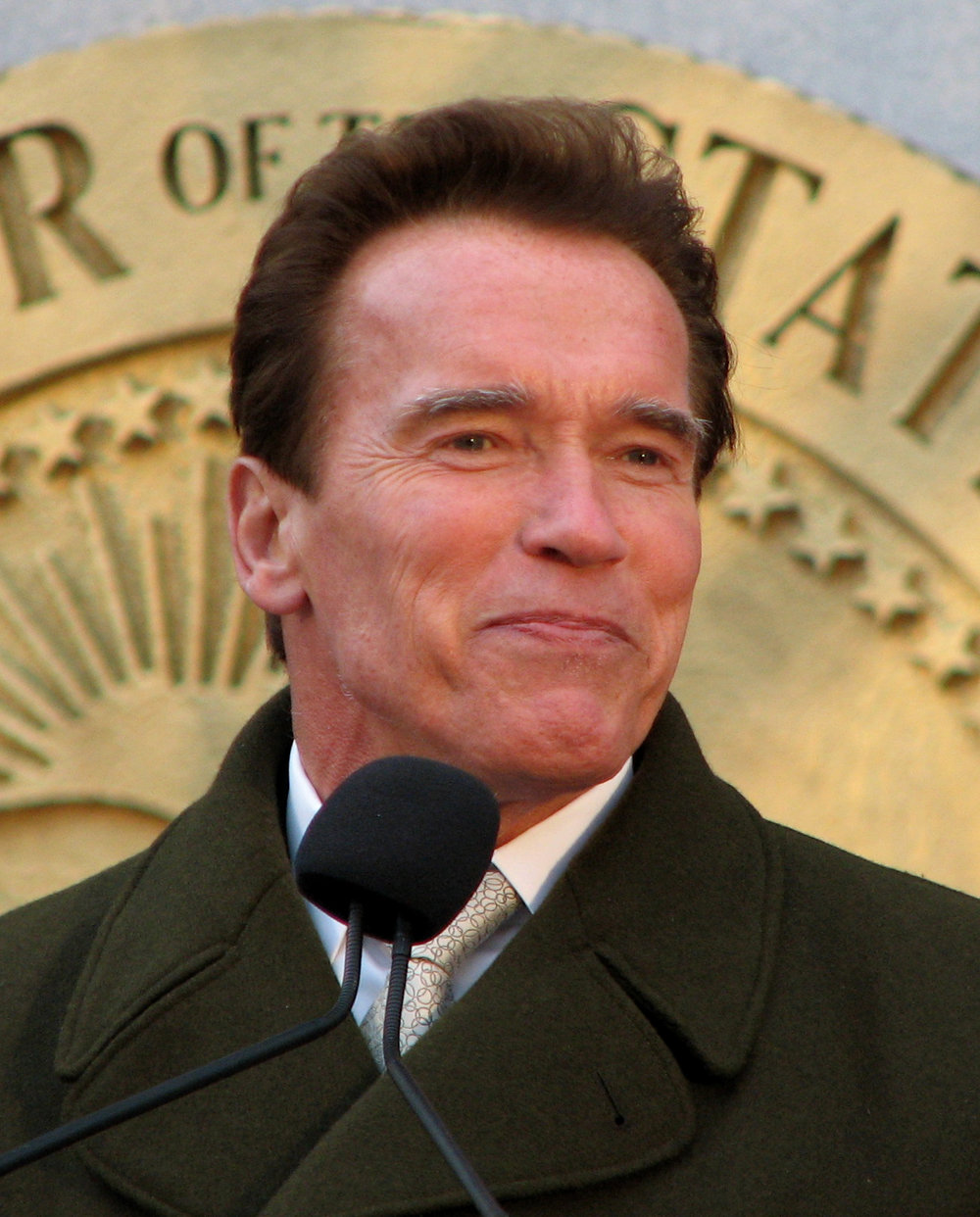 Arnold_Schwarzenegger_speech.jpg