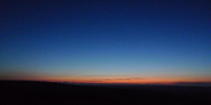 dusk dawn chorus.jpg