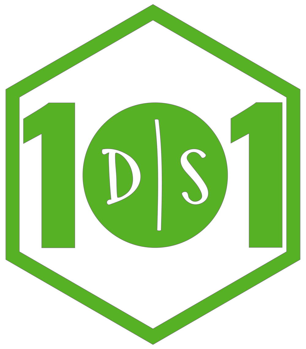 DS101.png