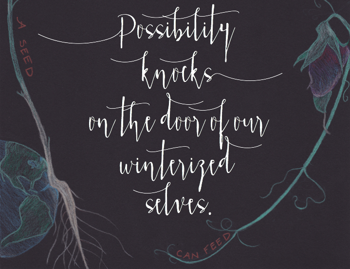 possibility-knocks.jpg