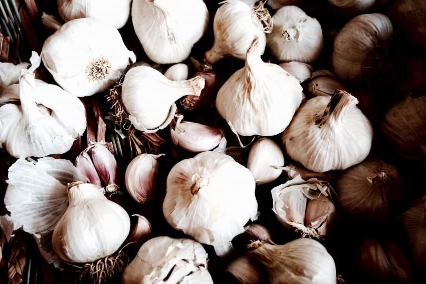 garlic-too-small-food.jpg