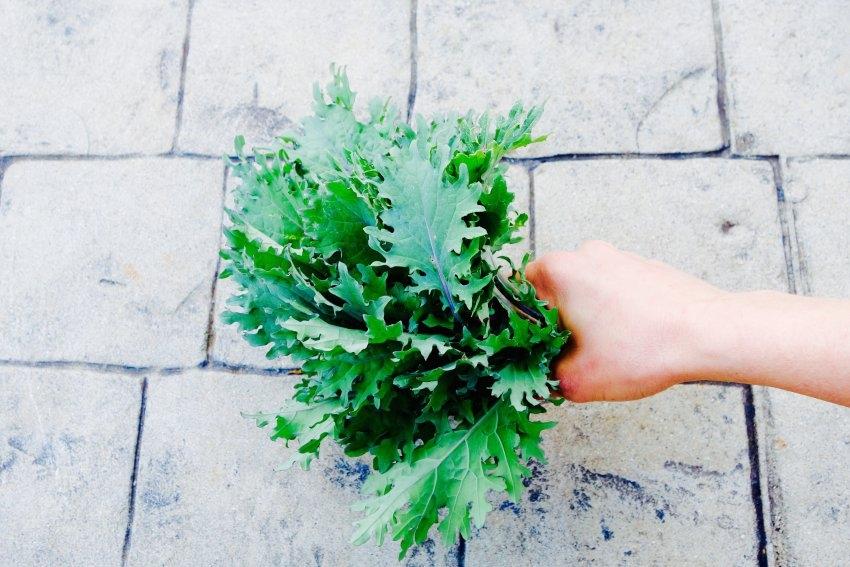 kale-too-see.listen.be_.jpg