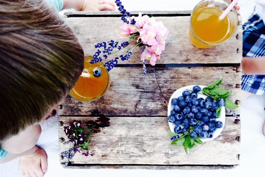 Stil-Tii-kombucha-picnic.jpg