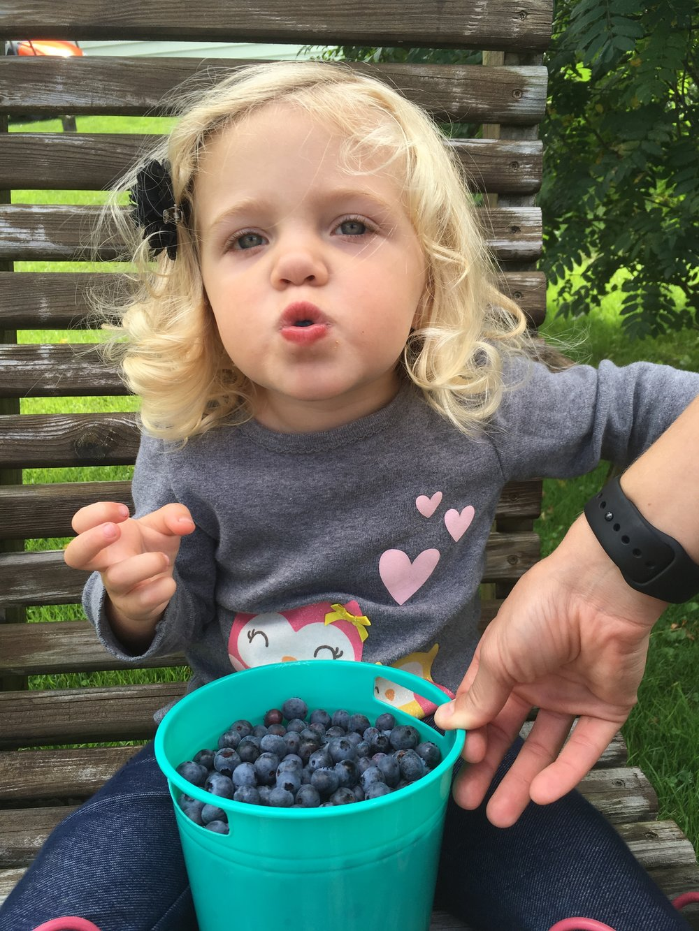 Eating up at Aunt Peggy's blueberry farm