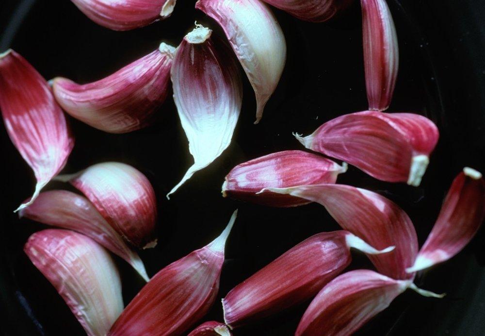 Allium-sativum-28026.jpg