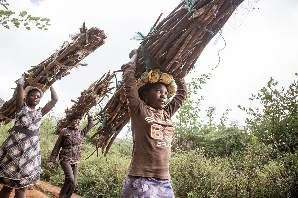 Children on their day off from school, collect firewood from the plateau for cooking.