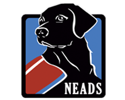neads logo.png