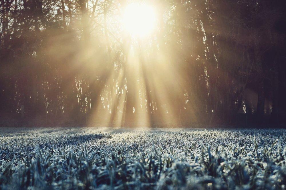 Winter Health & Wellness Retreat