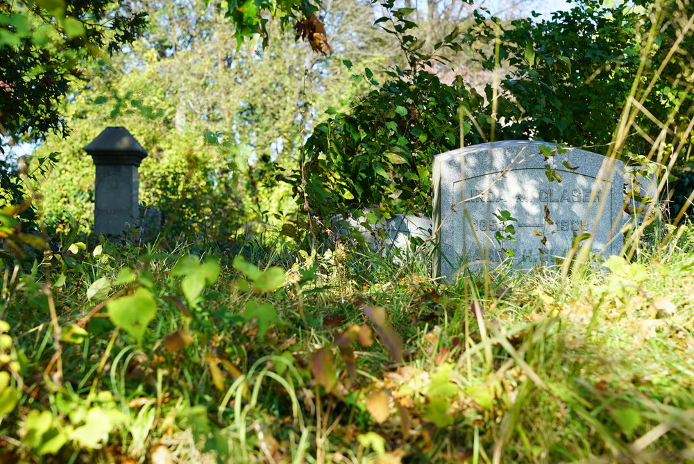 The ancient cemetery is now an overgrown jungle. Mount Vernon Cemetery. Philadelphia, Pennsylvania.