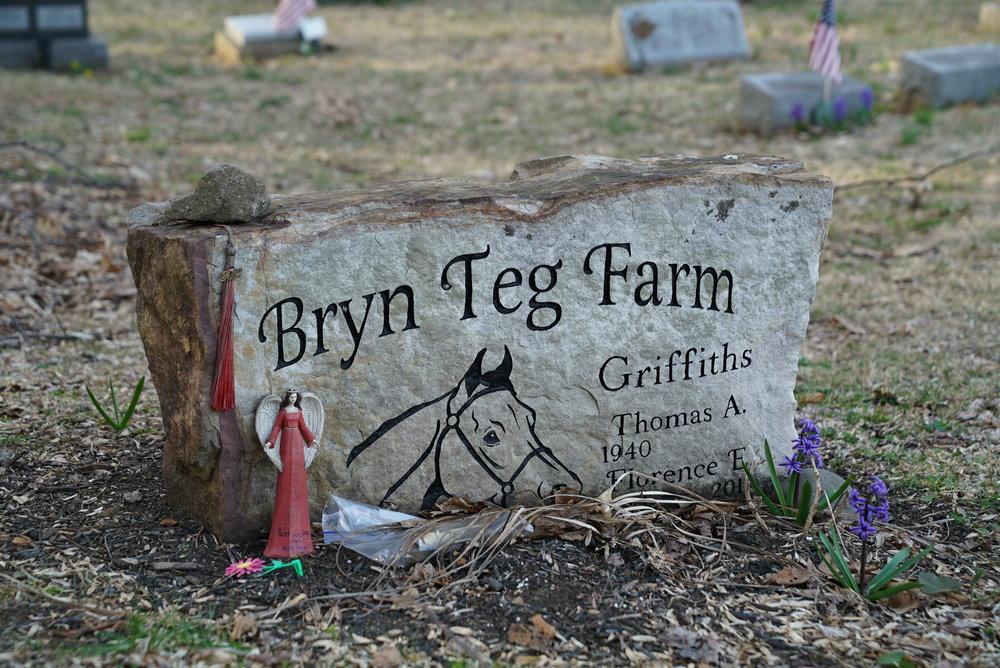 Unusual tombstone with a horse on it. Hibernia Methodist Episcopal Church Cemetery. West Brandywine Township, Pennsylvania.