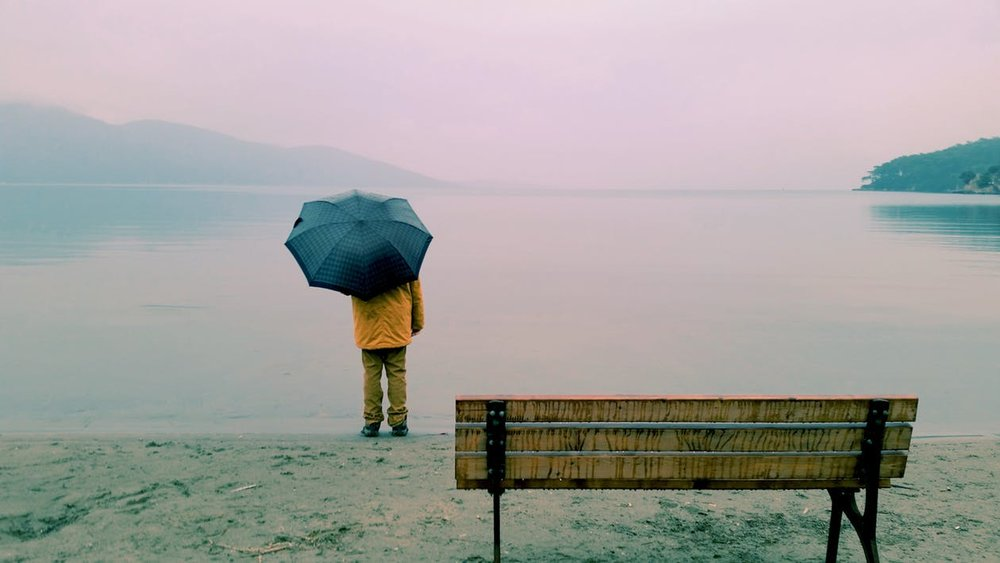 person with umbrella staring over water