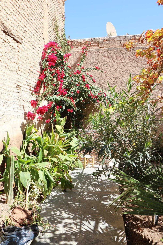 La Famille Marrakesh