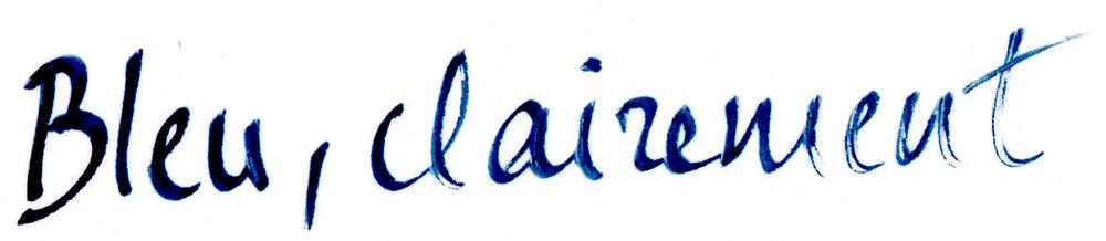 bleu title mailchimp.jpg