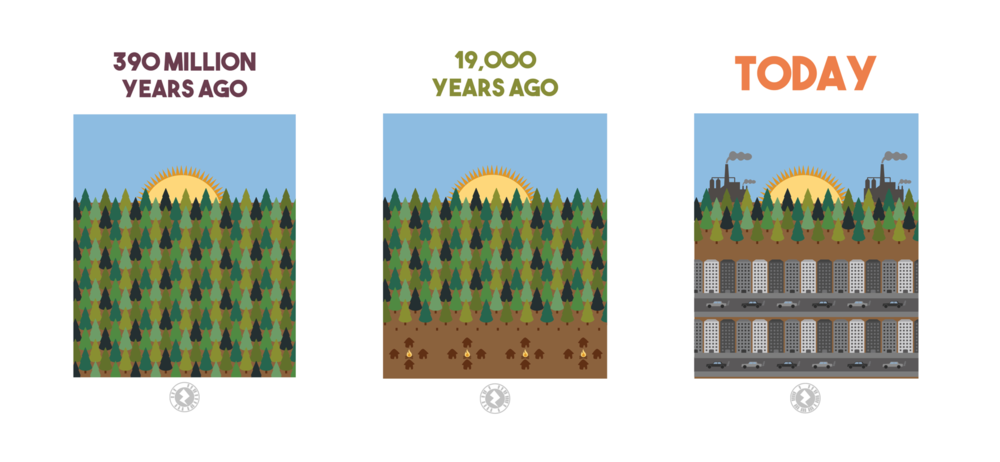 By repeating landscapes throughout time in the book, it shows just how much of an impact humanity has had on the planet.