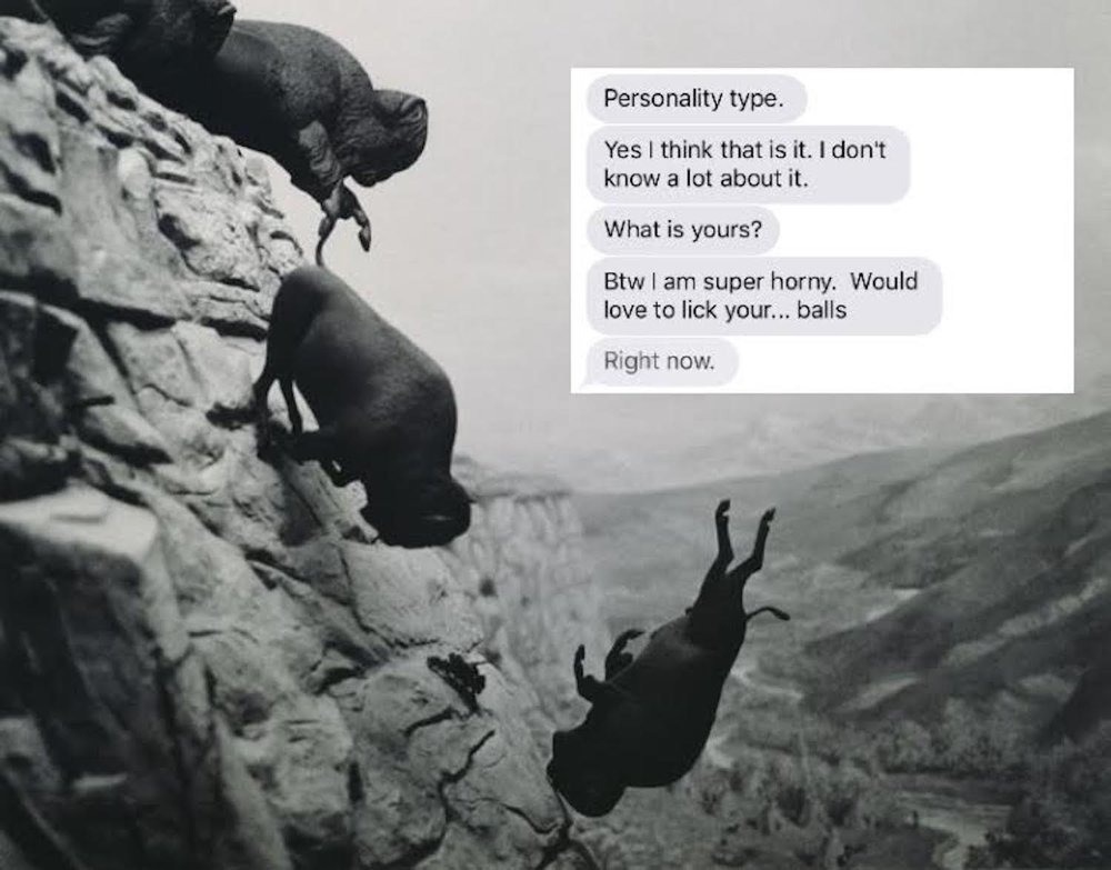 "ENFJ BTW   David Wojnarowicz ""Untitled Buffaloes""  and Text from Chad. Archival Digital Print. 2017  3:4"