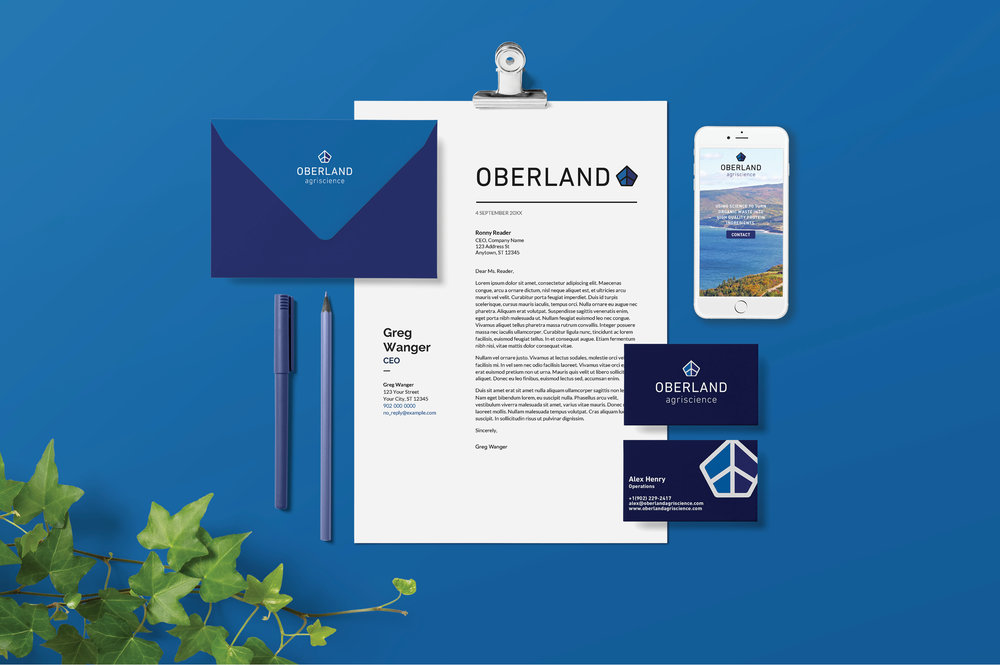 Oberland case study graphics4.jpg