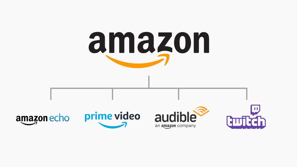 Amazon Hybrid Brand Architecture