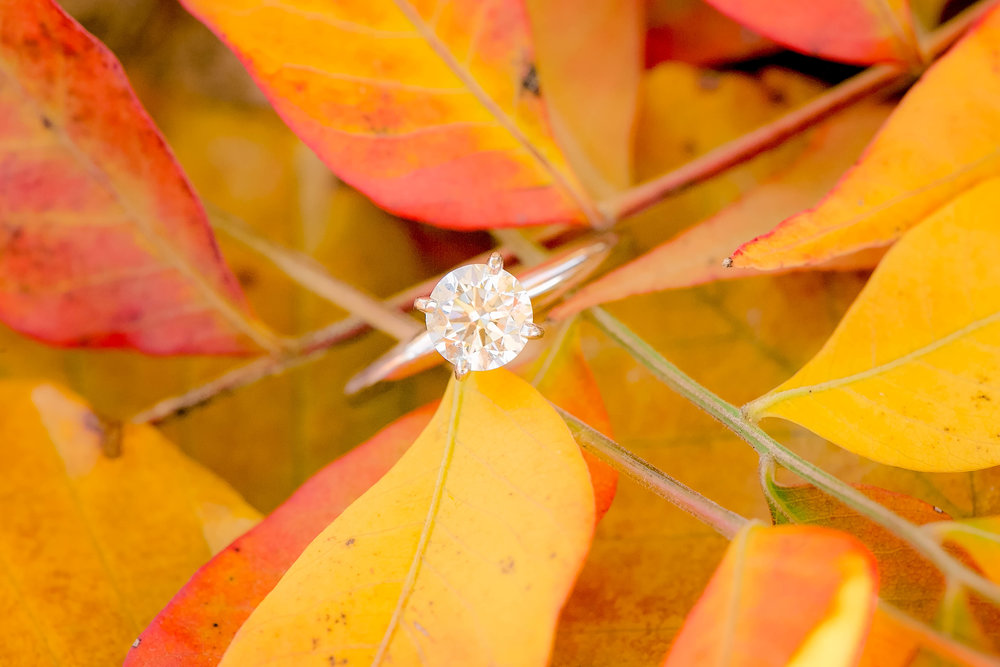 Johnson City, TN sunrise engagement session, East Tennessee wedding photography, Tri Cities engagement photography, military couple, fall engagement ring shot