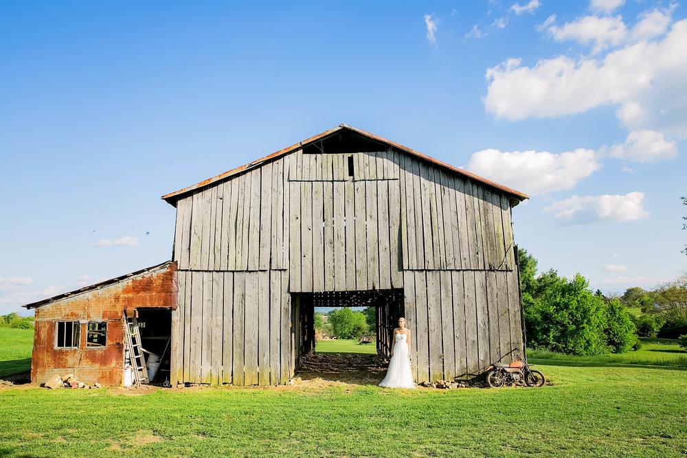 Colley Hill Farm, Dandridge TN wedding venue, East Tennessee wedding photography, styled wedding shoot, bridal portrait, East Tennessee wedding venue, farm wedding venue, barn