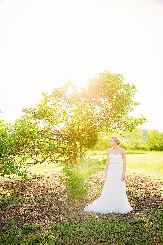 Colley Hill Farm, Dandridge TN wedding venue, East Tennessee wedding photography, styled wedding shoot, bridal portrait, East Tennessee wedding venue