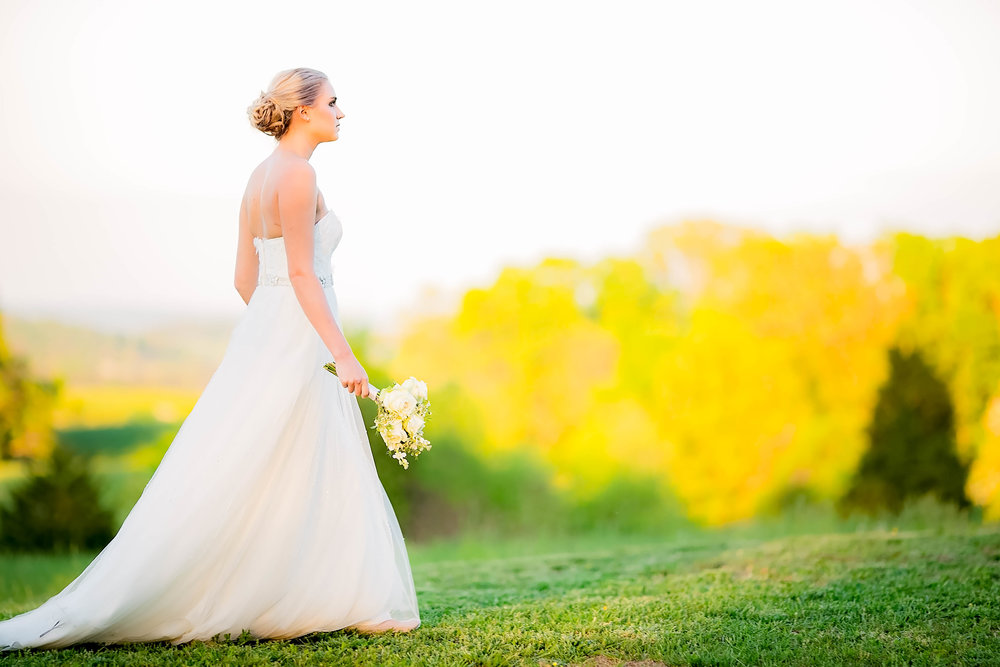 Colley Hill Farm, Dandridge TN wedding venue, East Tennessee wedding photography, styled wedding shoot, bridal portrait, East Tennessee wedding venue, farm wedding venue