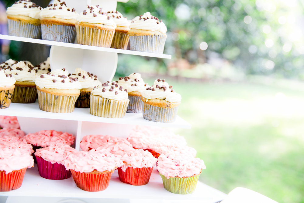 Hot Springs, NC wedding, East Tennessee Wedding photography, wedding details, dessert buffet, cupcakes