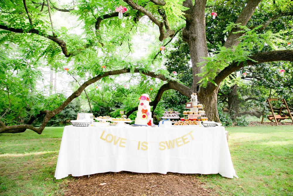 Hot Springs, NC wedding, East Tennessee Wedding photography, wedding details, dessert buffet table