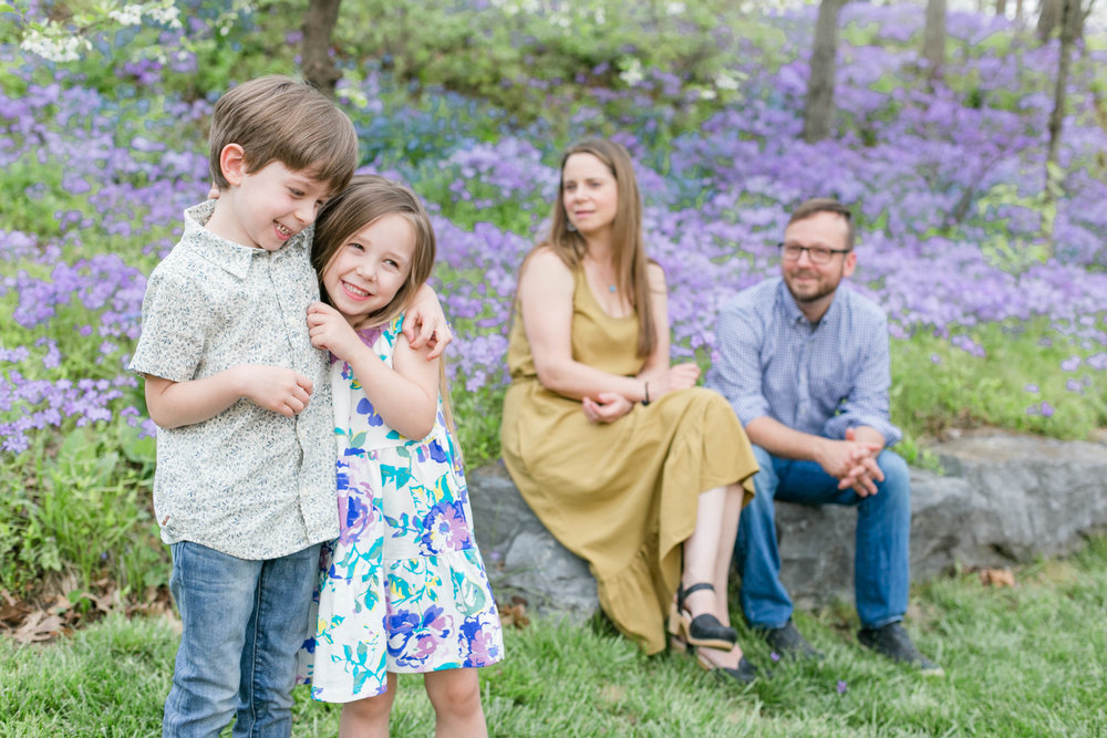 East Tennessee photography, Johnson City, Tri Cities, Jonesborough, family session, spring, engagement, wedding photographer, anniversary photos, portraits, light and airy photography