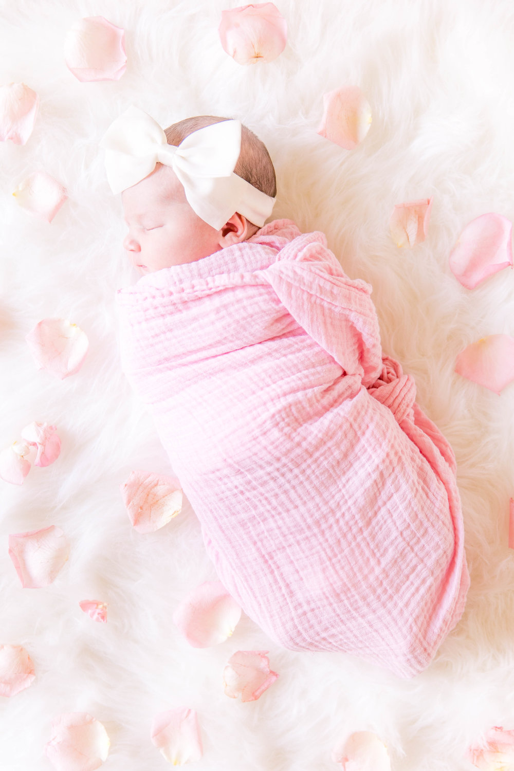 Johnson City newborn photography, Tri Cities photographer, East Tennessee photography, sibling photos, styled newborn session, rose petal photos