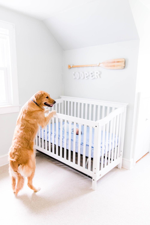 Cooper Newborn 5-8-18_0154.jpg