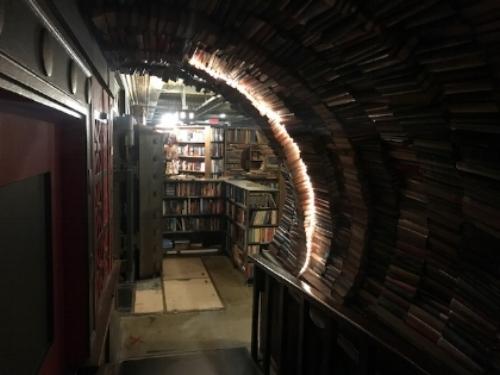 Beautiful book tunnel