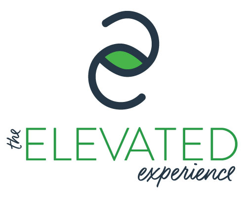 elevated experience logo e2 the esquared two es inverted green navy white