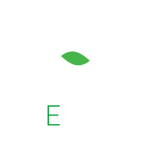 The E Squared logo.png
