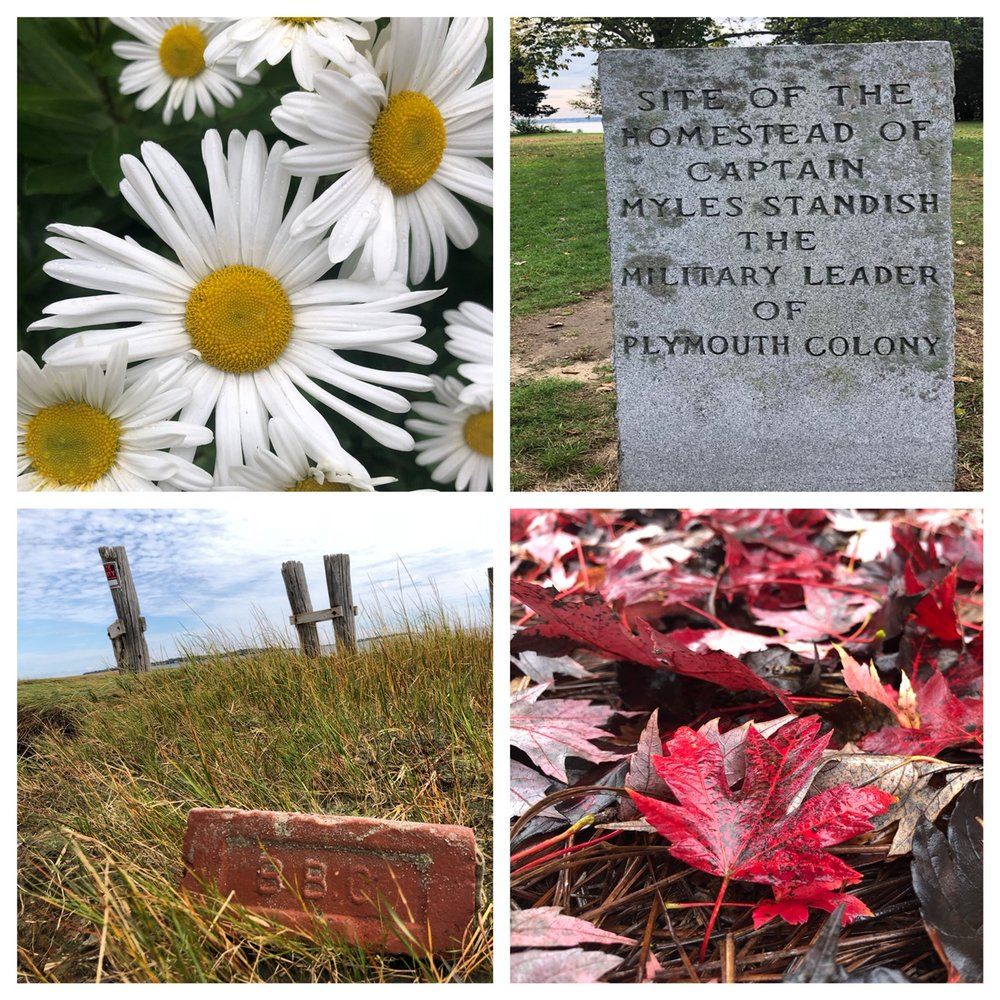 """The sweet smell of the breeze off the bay, the crackle of the leaves as I ventured out on a morning walk..all these memories I take back home with me. And, a brick to be mailed to Michelle for the """"Travel Collection""""."""