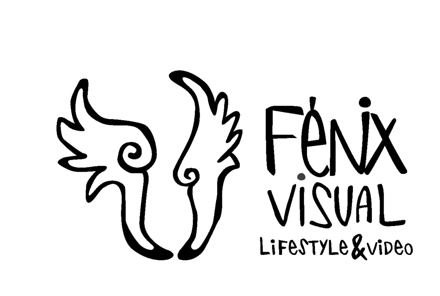 fenix visual
