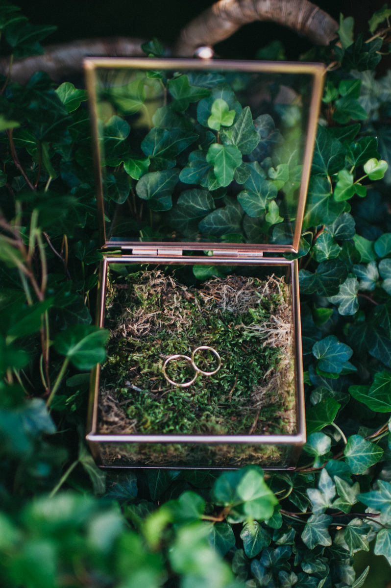 boda en asturias. anillos de los novios