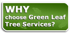 why-choose-green-leaf-tree-services-golden-invermere-bc