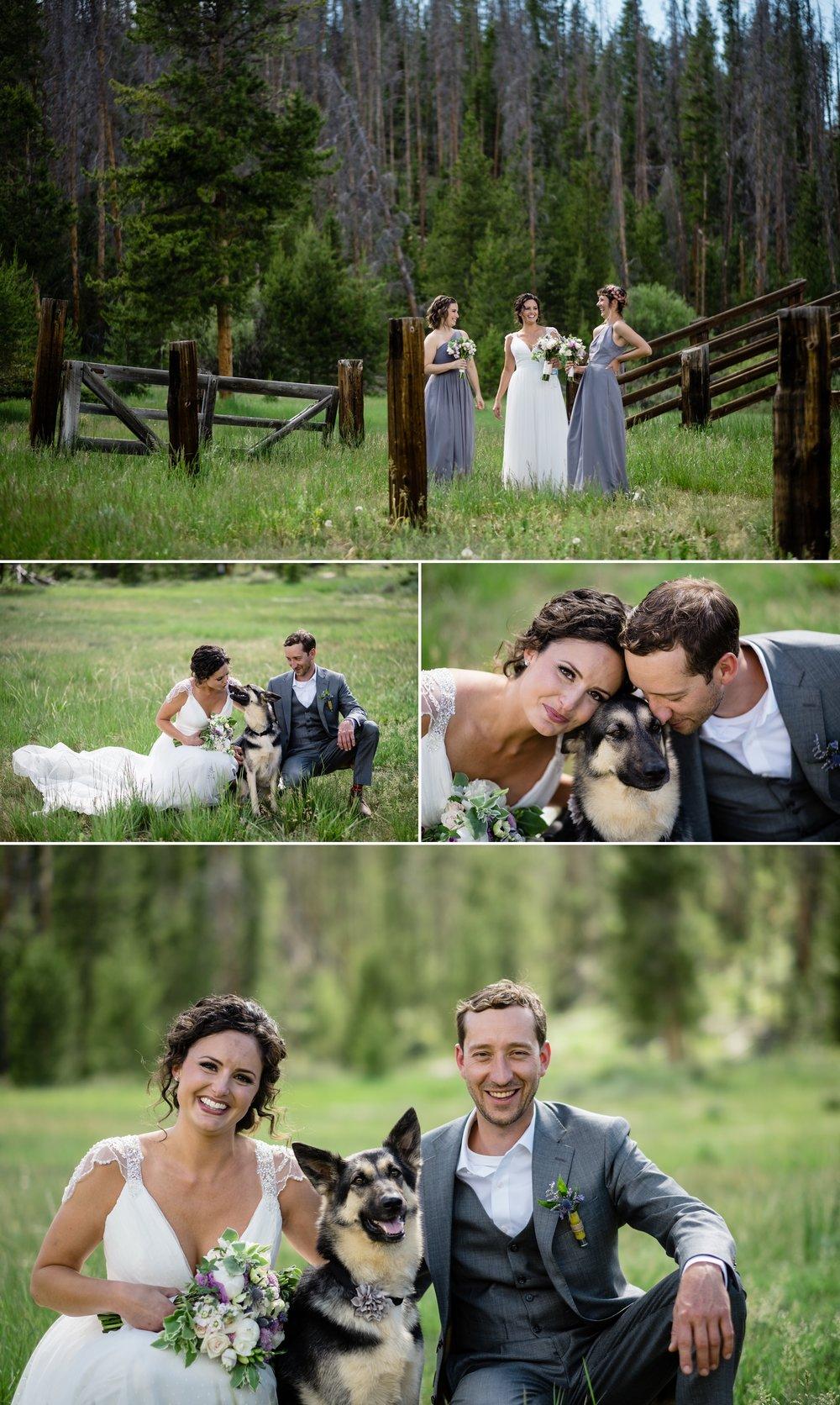 Kara, Pat and their dog Nava during couples photos