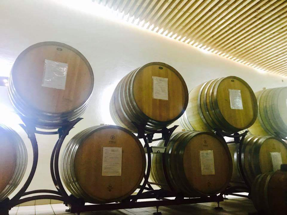 oak wine barrels italy