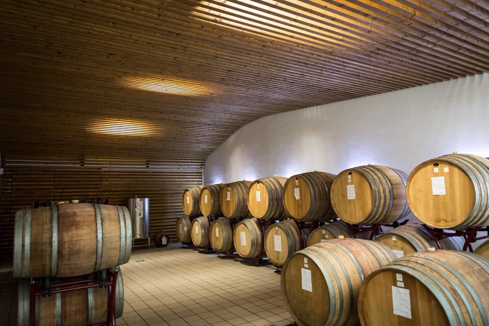 Oak Barrels at Palazzo Tronconi Winery photo @Marco Reali