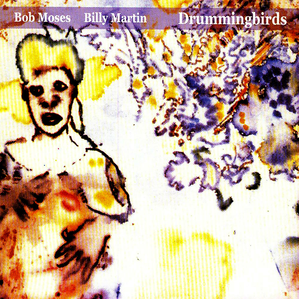 DRUMMINGBIRDS  Compact Disc:    E-mail your order    Release date: 2003 Label:  Amulet      Bob Moses (drums, percussion)  Billy Martin (drums, percussion)