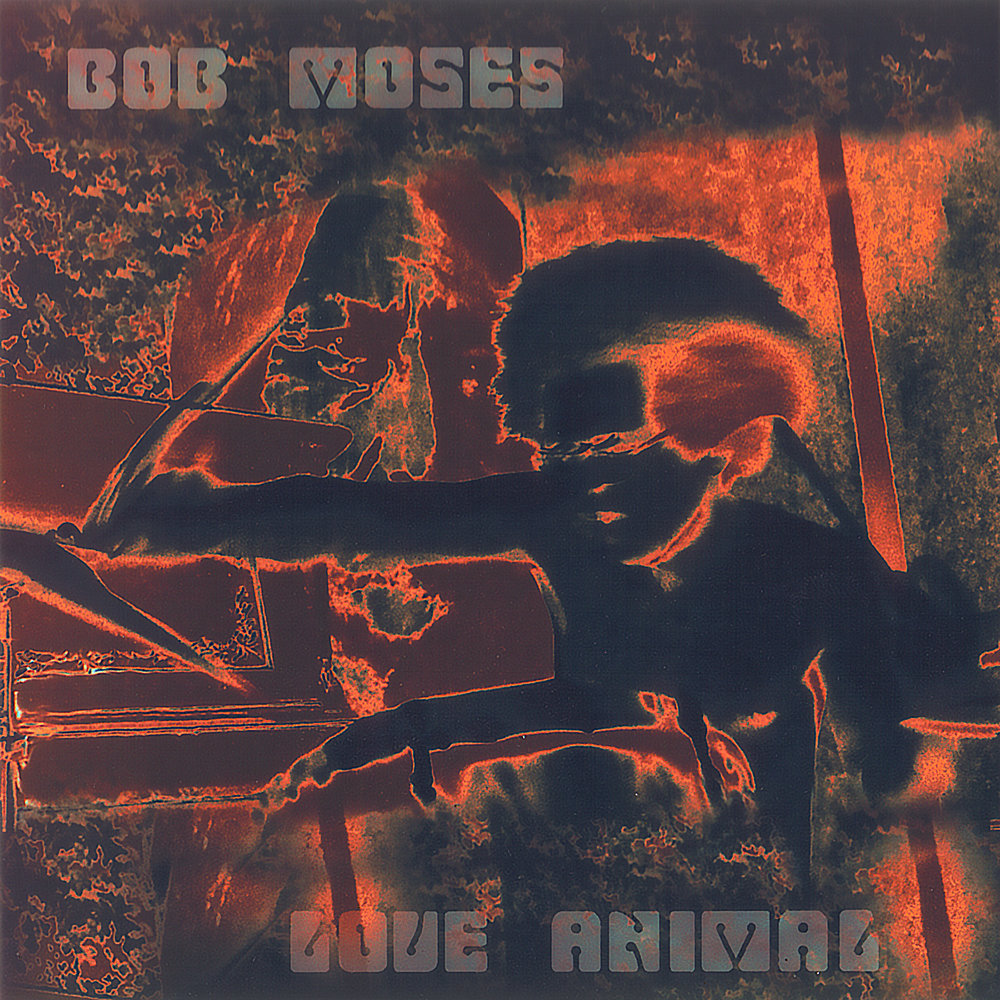 LOVE ANIMAL    Compact Disc -    E-mail your order     Recorded - 1968    Release Date - 2003    Label -    Amulet     Bob Moses - Drums    Larry Coryell - Vocals, guitar    Keith Jarrett - Sax, piano    Jim Pepper - Sax    Steve Swallow - Bass