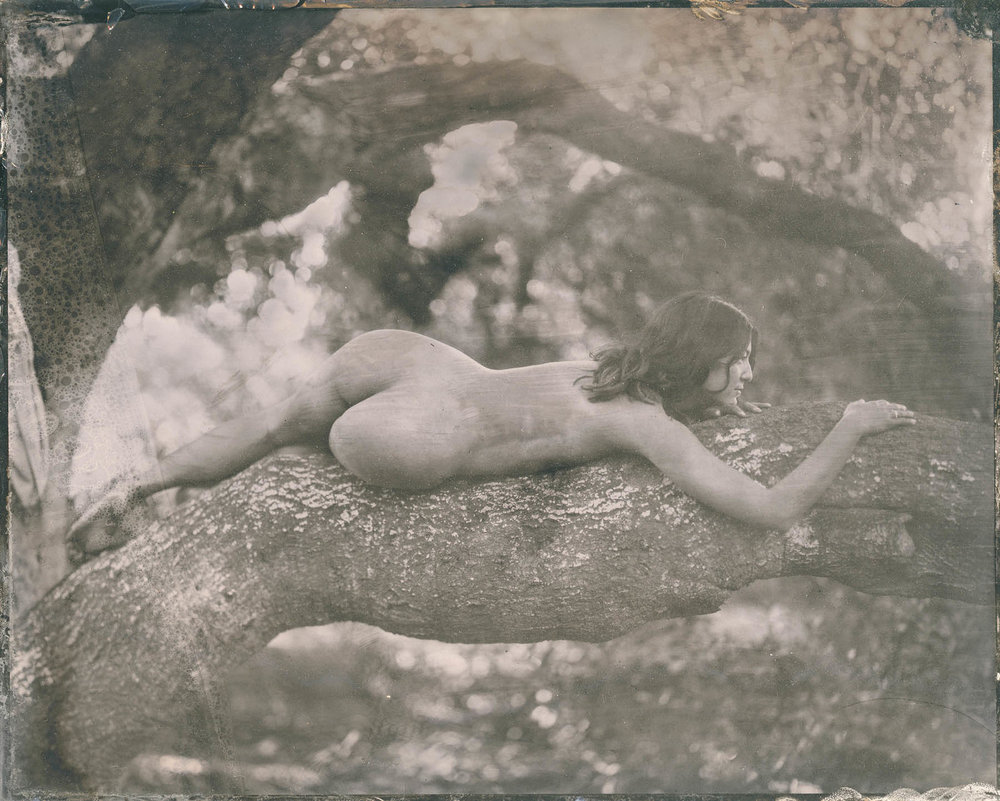 LindseyRoss_Figure3_tintype_8x10in_1200.jpg