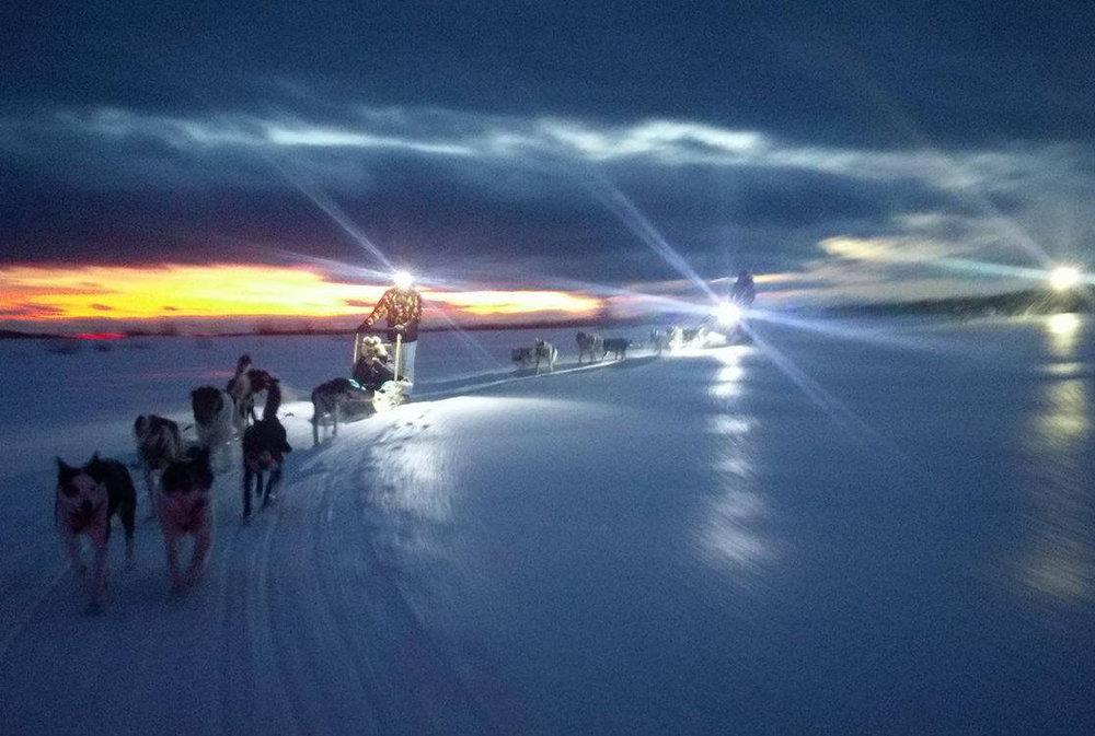 Hundekjøring Sjusjøen