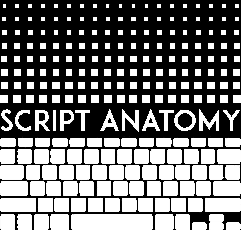SCRIPT ANATOMY — Intro Video